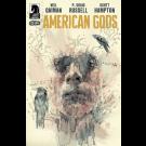 NEIL GAIMAN AMERICAN GODS SHADOWS #2 MACK VARIANT