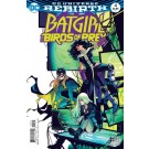 BATGIRL AND THE BIRDS OF PREY #4 VARIANT EDITION