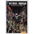 BATMAN TMNT ADVENTURES #1 SUB COVER